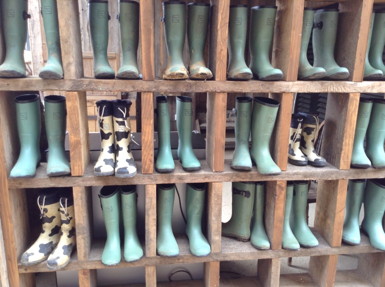 Soho Farmhouse wellies